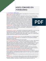 Enfermedades Comunes en Gallinas Ponedoras