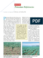 2000. Investigating Potassium Deficiencies in Corn
