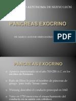 38Pancreasexocrino