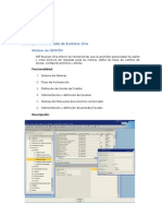 Funcionalidad por módulos y Reportes SAP Business One