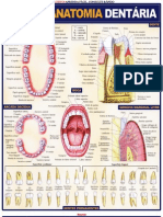 Resumão-Anatomia Dentária (pdf)