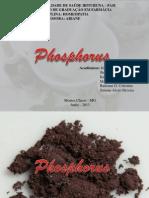 Slide Phosphorus