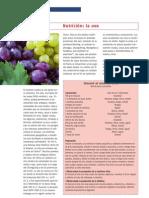 Nutricion Uva