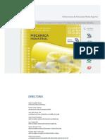 Plan y Programa Mecanica Industrial 2013