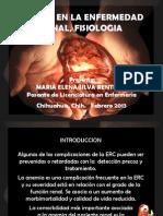 Anemia en La Enfermedad Renal, Fisiologia