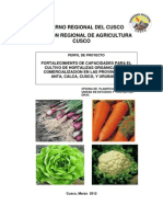 Fortalicimiento de Capacidades Para El Cultivo de Hortalizas Organicas...