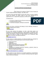 Estructura de Proyectos Vers. 003-2012