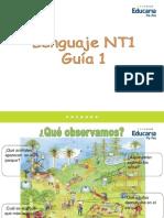 lenguaje NT1contar silabas