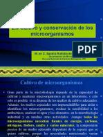 2.8-2.13 Cultivo y Conservacion de Microorganismos (1)