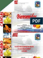 Expo Planta