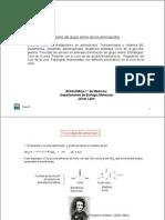 Tema26 Metabolismo Grupo Amino Aminoacidos