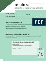 file_366_76534pf_ficha nº14_la celulosa (CUARTO AÑO BASICO)