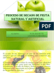 Proceso de Secado de Fruta Natural y Artificial