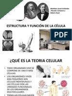 estructura y función de la célula.ppt