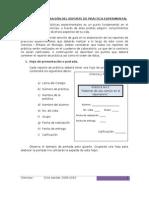 Formato practicas.doc