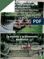 Articles-179276 Archivo (1)
