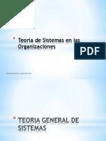 TGS en Las Organizaciones