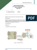 Informe_previo_micro2