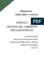 Gestion Del Ambiente Organizacional