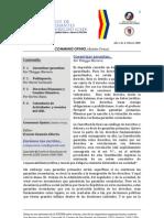 Boletín Communis Opinio - Año 1, No. 4, Febrero 2009.