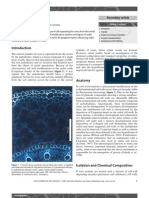 Endodermis.pdf