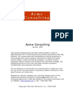 acmeconsulting-marketing plan.pdf