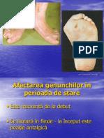 PR2_CURS Dr. Milicescu