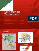 Proyecto Tambo Grande v1