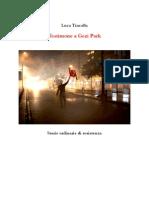 Testimone a Gezi Park Luca Tincalla