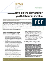 Policy Brief Constraints on the Demand for Youth Labour in Zambia