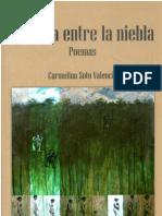 Carmelina Soto - La casa entre la niebla