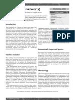 Bryophytes(Liverworts).pdf