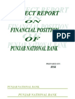 Report on Punjab National Bank
