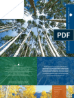 2013 Overview and 2012 Annual Report of The Aspen Institute