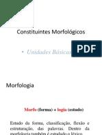 CONSTITUINTES MORFOLÓGICOS E UNIDADES BÁSICAS