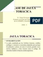 CLASE DE JAULA TORÁCICA IV-2-08