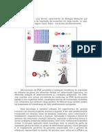 Trabalho de Bioquímica-microarranjo