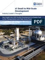 ProgressBrief LNG Facility Development