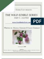 CLOVER - Wild Edible Series