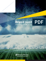 BrasilSustentavel Desafios Do Mercado de Energia