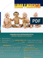 variabilidadyherencia-110420163014-phpapp02