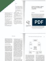 desarrolloCompatible.pdf