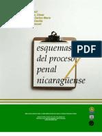 Esquemas Proceso Penal Nicaragüense