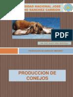 Clase 1 - Importancia de Produccion