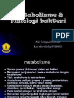 Metabolisme & Fisiologi Bakteri 4 Students