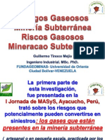 Riesgos Gasesoso Venezuela
