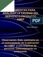 Amef Aplicado Al Sercicio