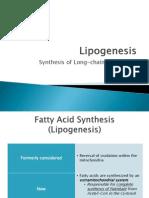 Lipogenesis