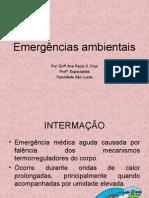 12 EMERGÊNCIAS AMBIENTAIS 2007.2