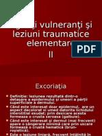 Leziuni Elementare II